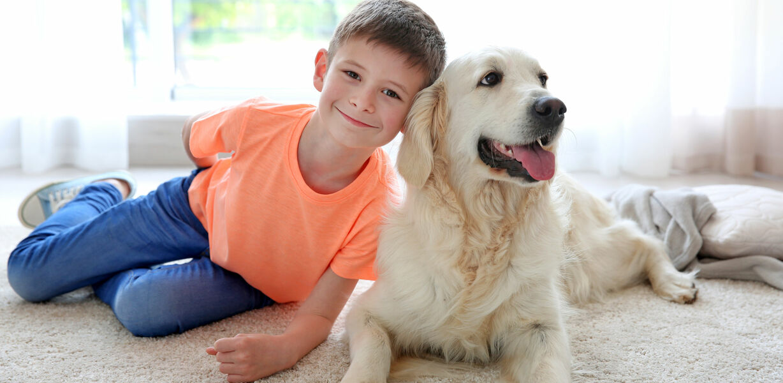Кинологи назвали лучшие породы собак для детей